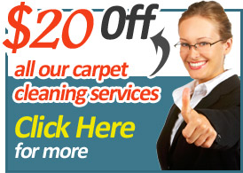 Upholstery Cleaning Expert Upholstery Cleaners